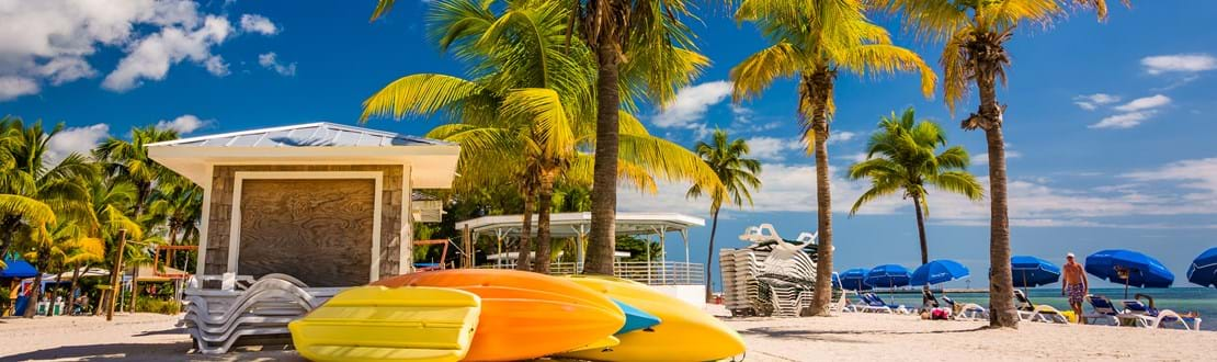 shutterstock_231696448 Palm trees on the beach in Key West, Florida..jpg