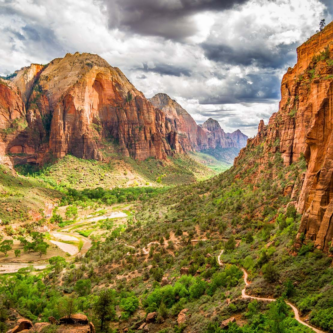 shutterstock_220731535 colorful landscape from zion national park utah.jpg