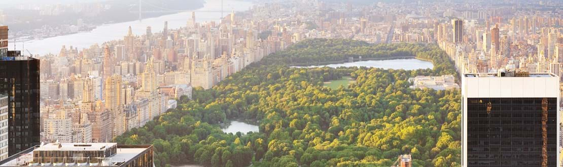 shutterstock_54079978 New york manhattan at sunset - central park view.jpg
