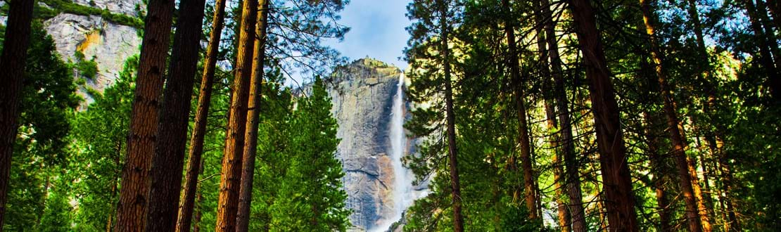 shutterstock_128950319 Yosemite Waterfalls behind Sequoias in Yosemite National Park,California.jpg
