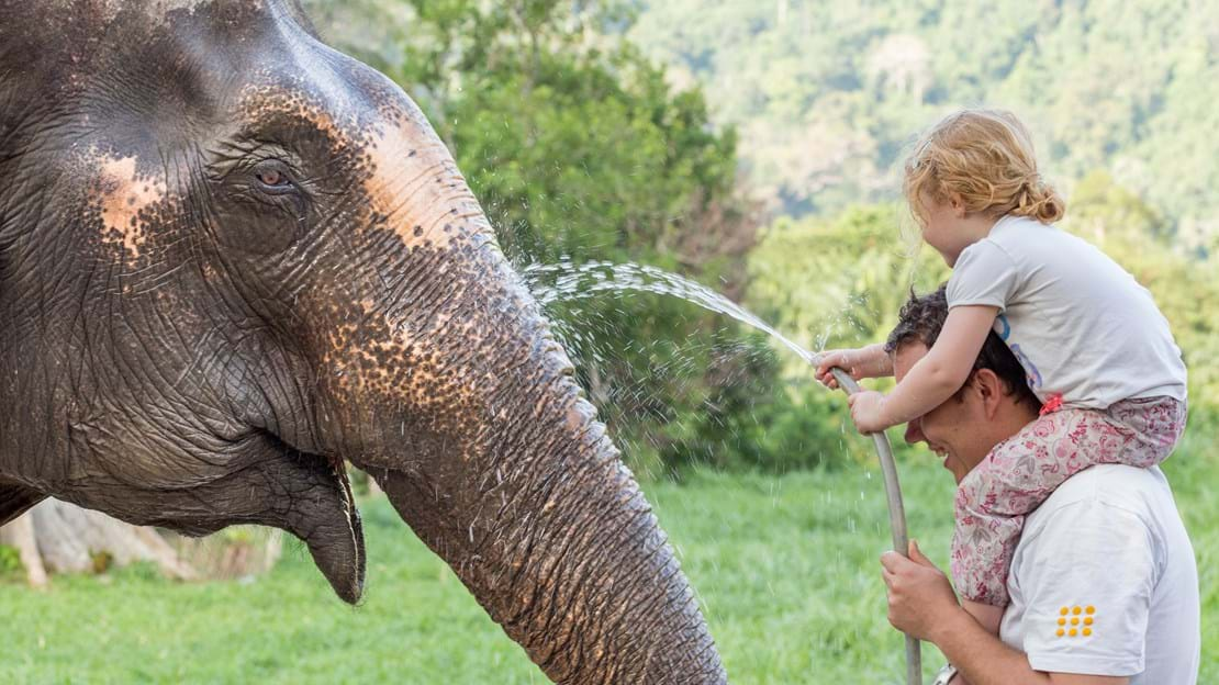 Ethical Elephant Experience at Elephant Hills with children.jpg