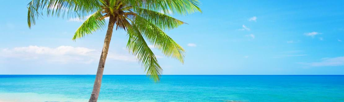shutterstock_92801089 beautiful beach with coconut palm. Koh Lanta, Thailand.jpg